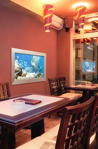 Amp Sea Virtual Aquarium
